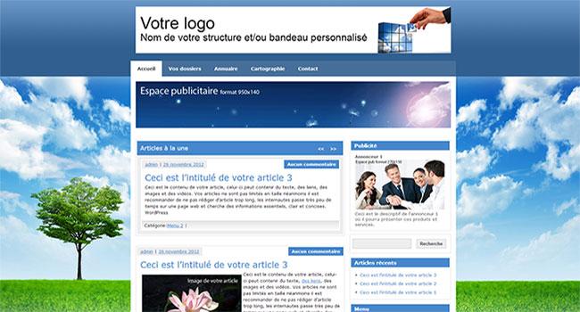 site_web